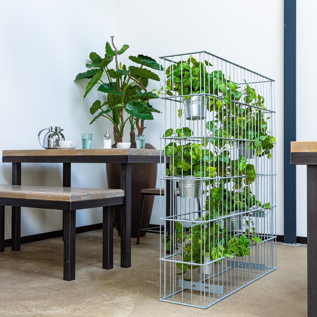 Raumteiler, Ansteckungsschutz, Gabione, künstliche Pflanzen, Raumtrenner