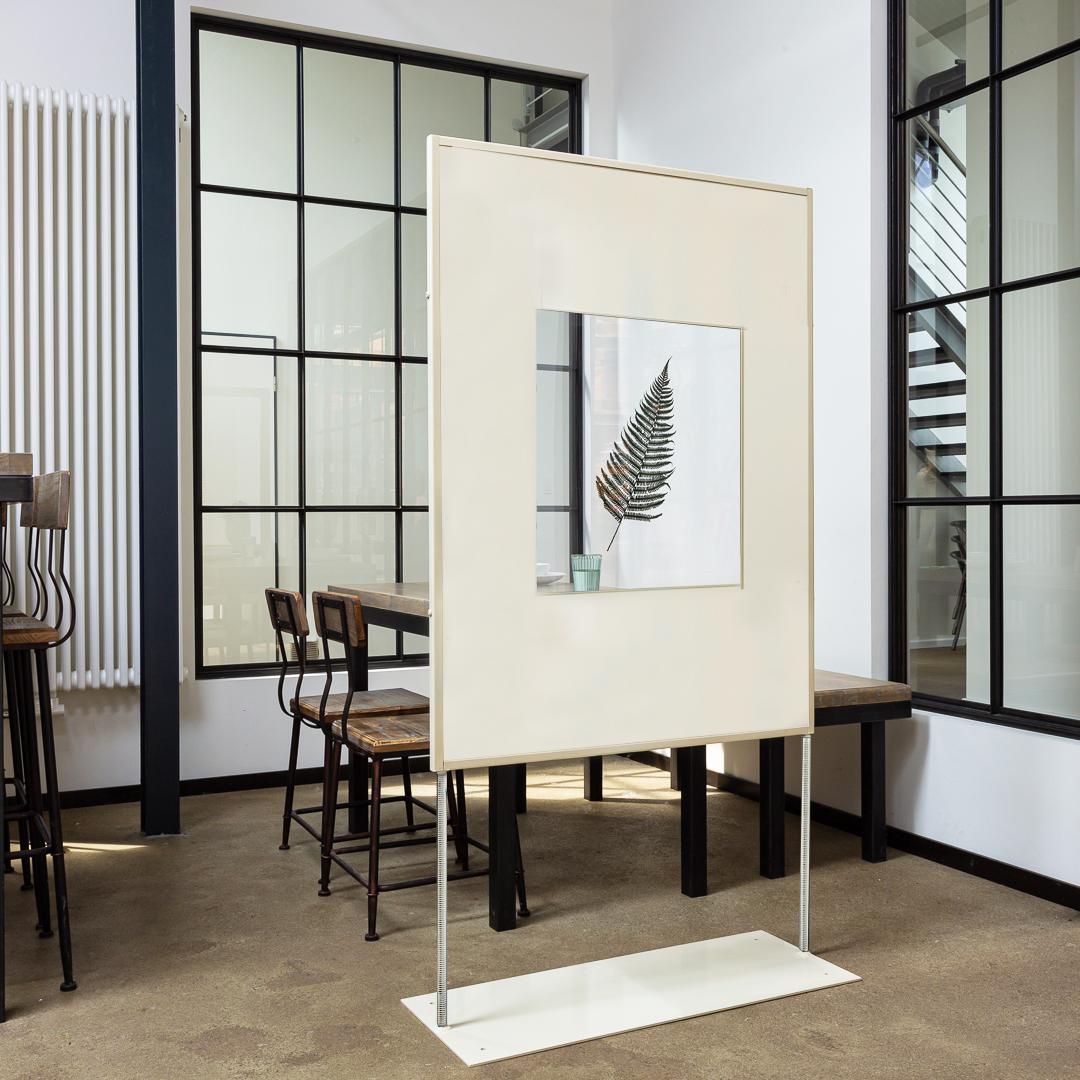 Raumteiler, Ansteckungsschutz, Acrylglas, Farn, teil transparent, Raumtrenner