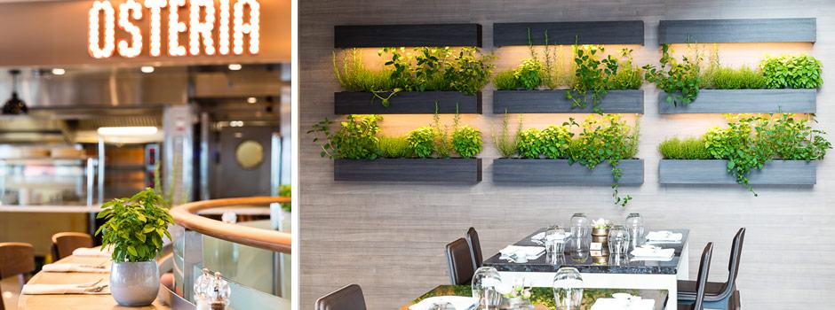Restaurant_slider_ref03